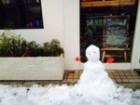 大阪に雪‼︎